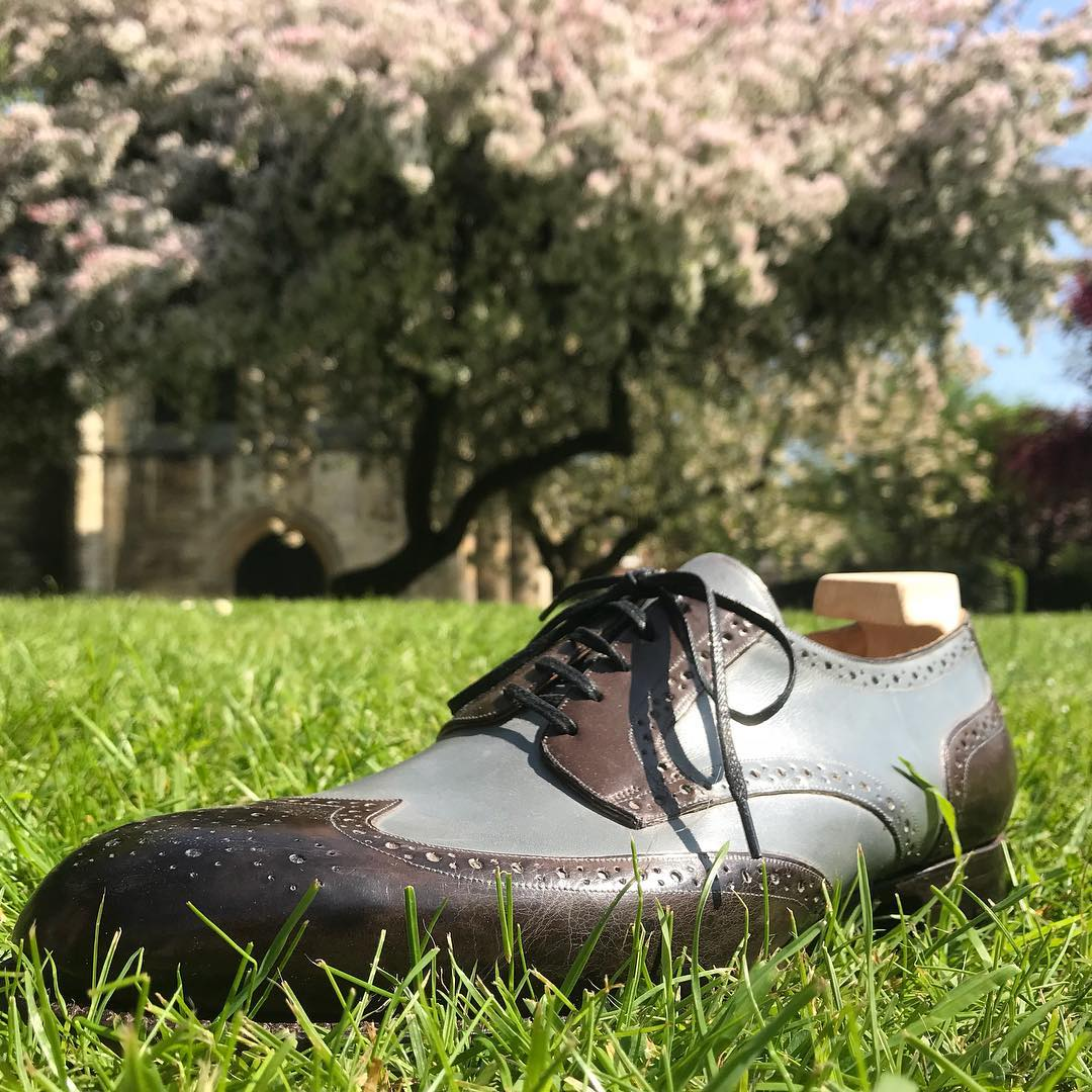 blue and black shoe on grass with tree in the background